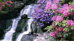 Lovely Waterfall Wallpaper 45365