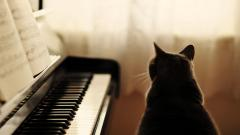 Piano Wallpaper 45844