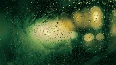 Rain Wallpaper 46116