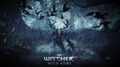 The Witcher 3 Wild Hunt Wallpaper 47267