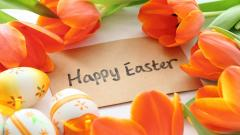 Wonderful Easter Wallpaper 45721