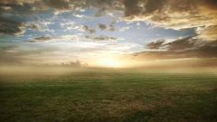 Grasslands Wallpaper 46417