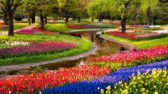 Lovely Garden Wallpaper 46696