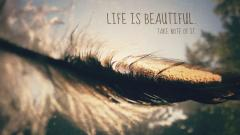 Lovely Quote Wallpaper 46084