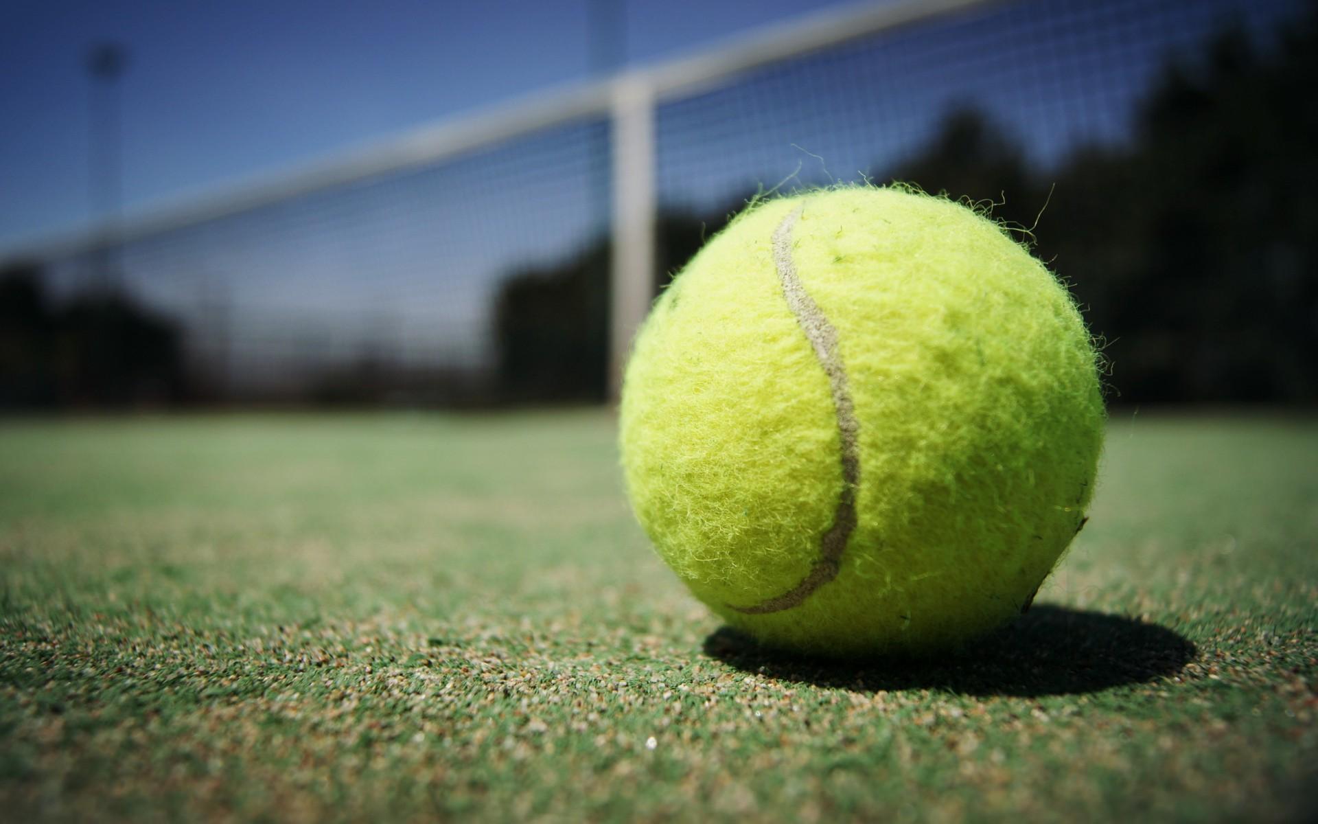 tennis ball desktop wallpaper 48957