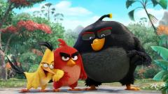 Angry Birds Movie Wallpaper 48786