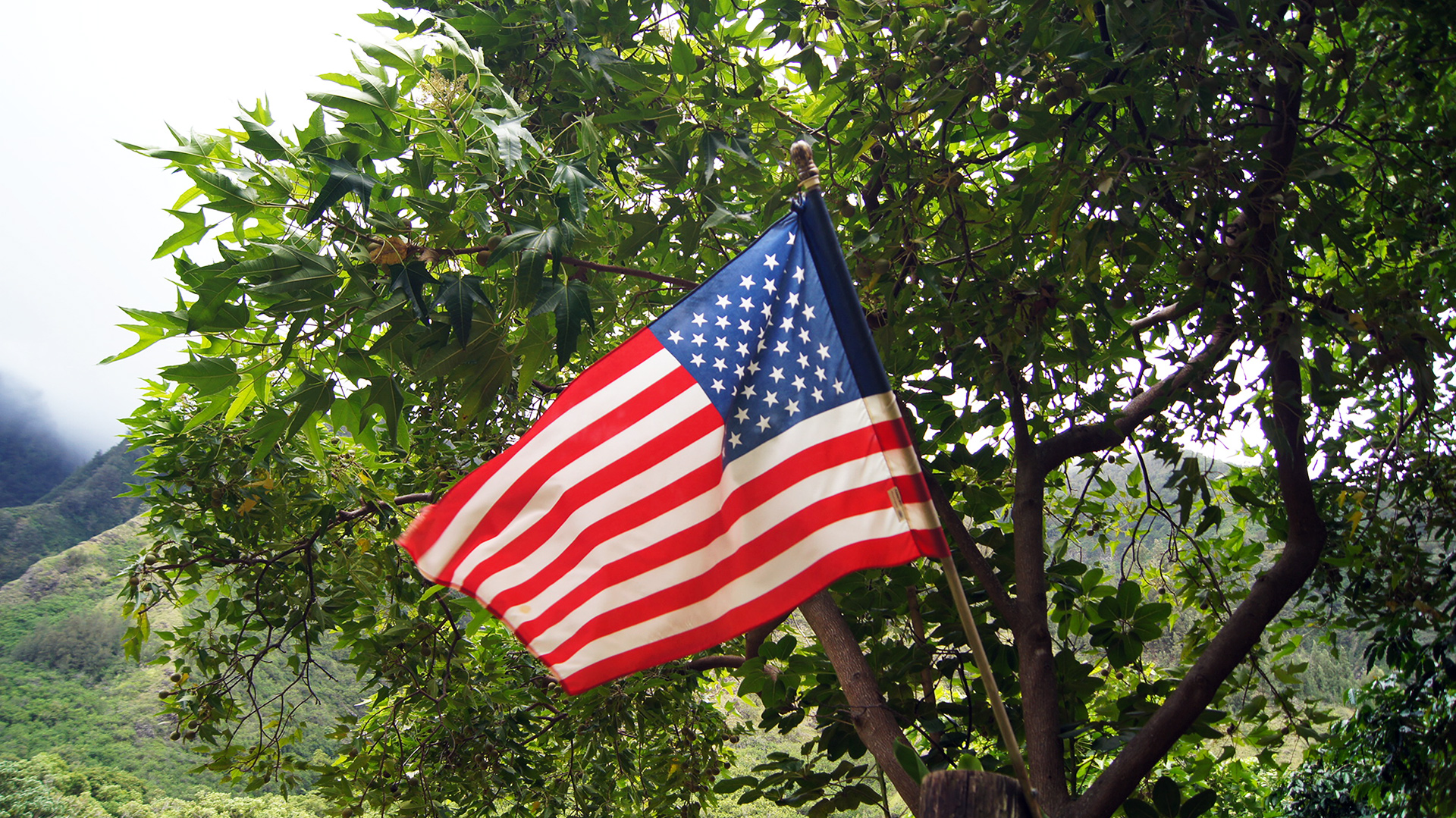 united states flag in maui
