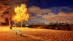 Fall Wallpaper 48685