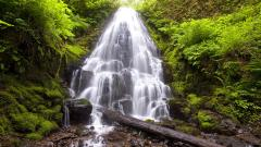 Fantastic Waterfall Wallpaper 45991