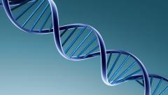 Genetic Wallpaper 47249