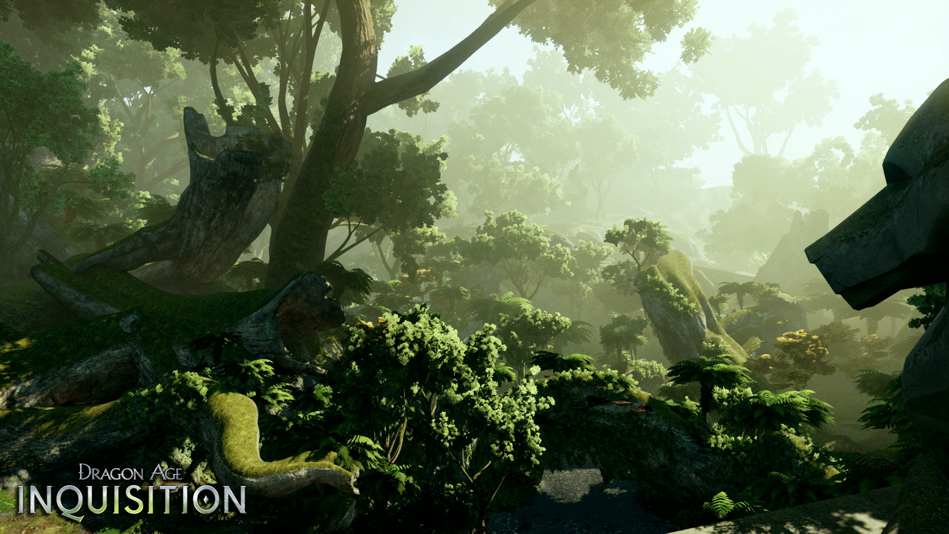 Dragon Age Inquisition Wallpaper 46389