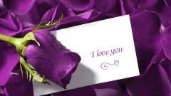 Love 46782