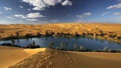 Oasis Landscape Wallpaper 46244