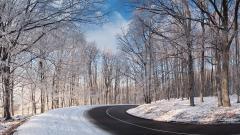 Snowy Wallpaper 46755