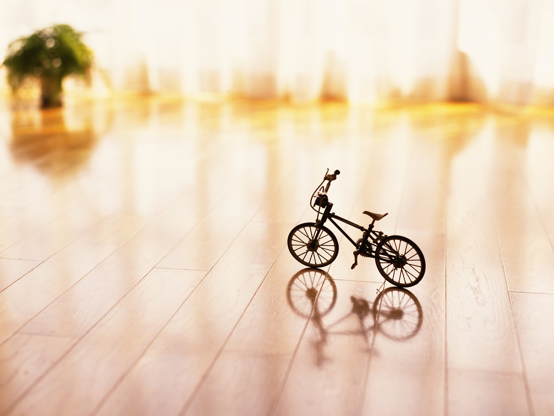 Toy Bicycle Wallpaper 46132 1920x1440 px HDWallSourcecom