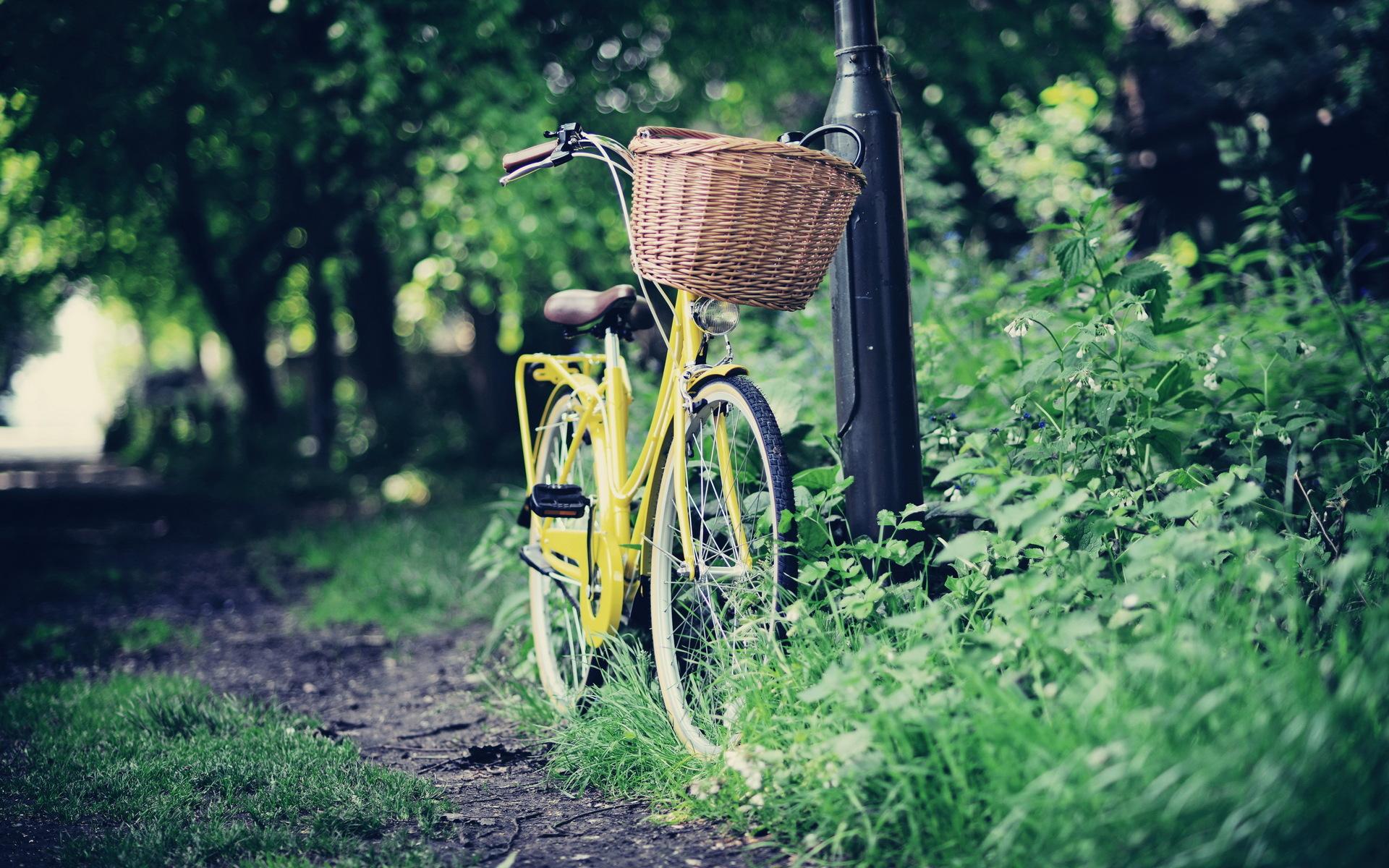 wonderful bicycle wallpaper 46133