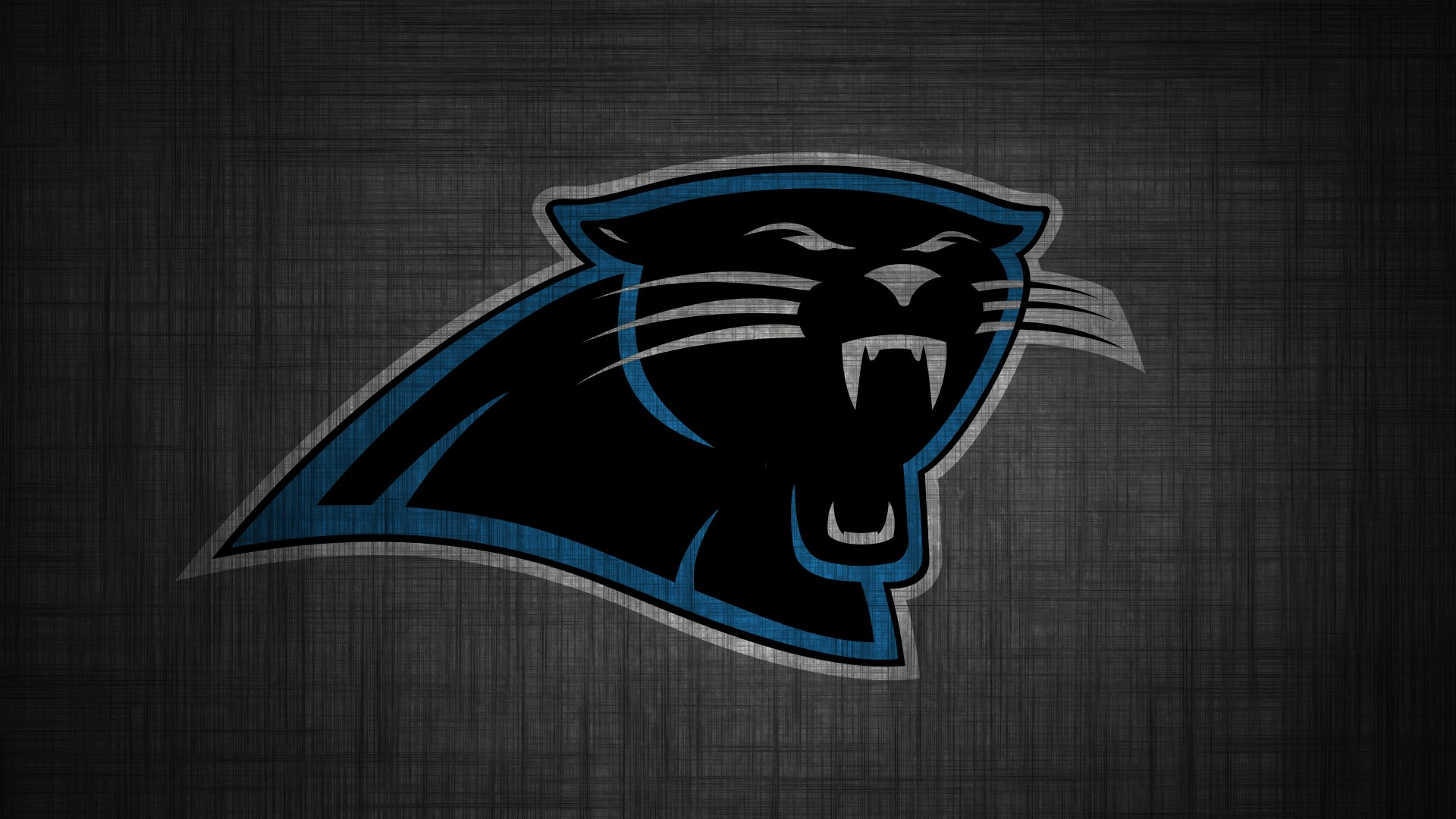 Panthers wallpaper 14569 1680x1050 px hdwallsource carolina panthers desktop wallpaper 49272 voltagebd Image collections