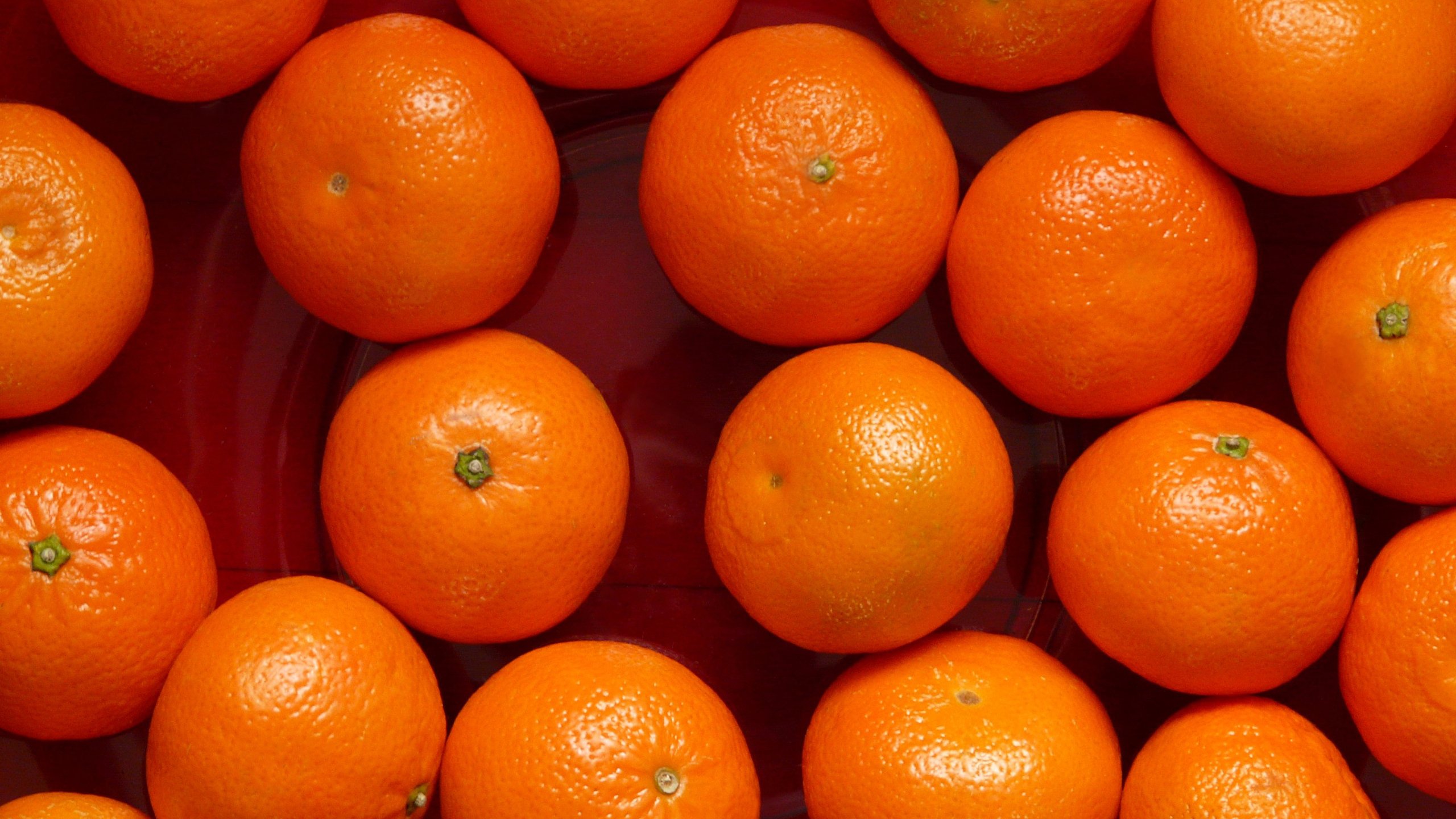 mandarin oranges wallpaper background 54250