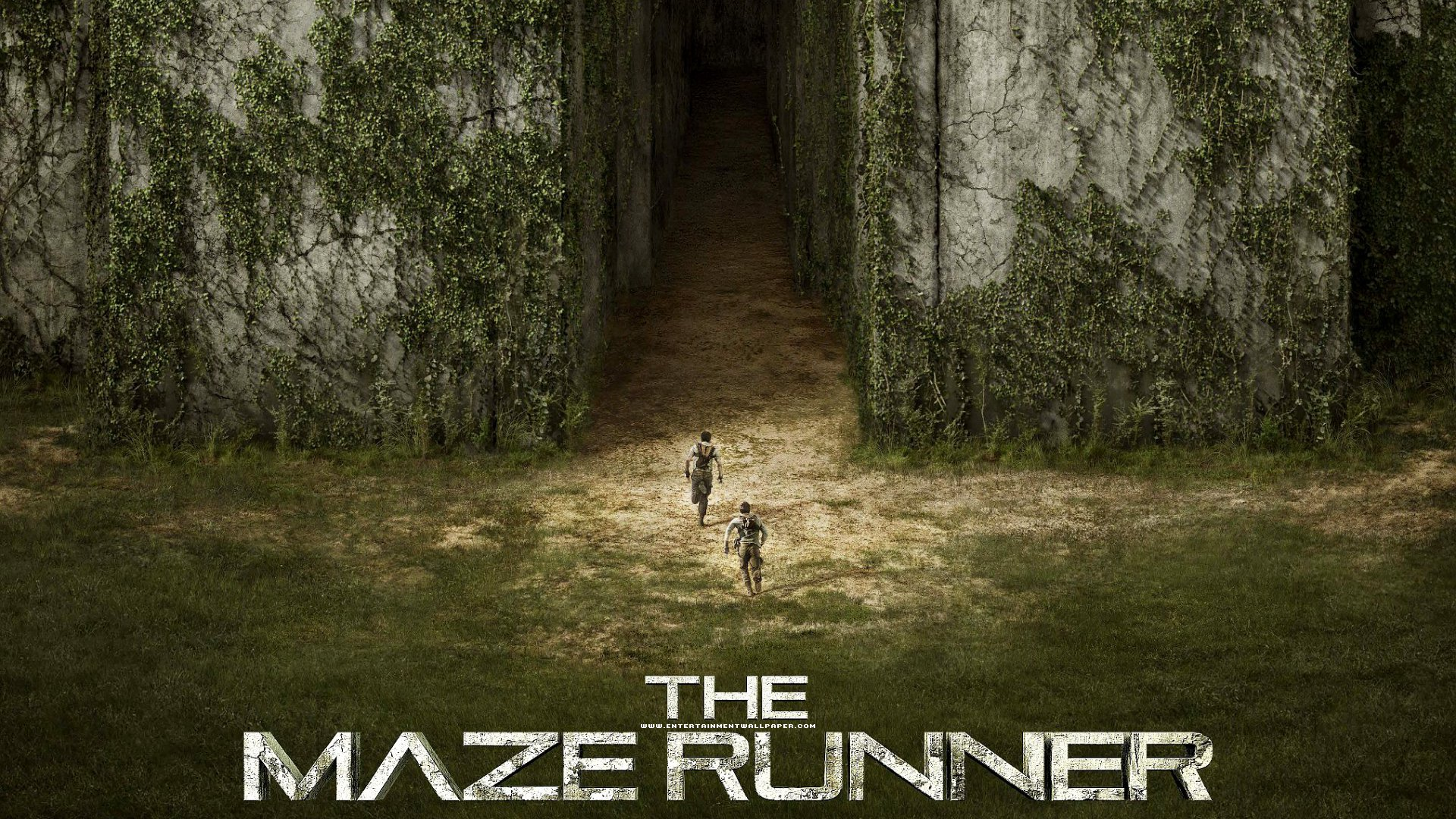 The Maze Runner Movie Desktop Wallpaper 54363 1920x1080px