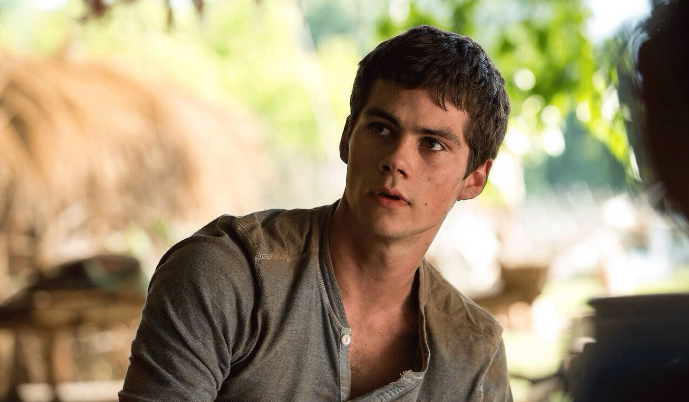 the maze runner movie thomas hd wallpaper 54364