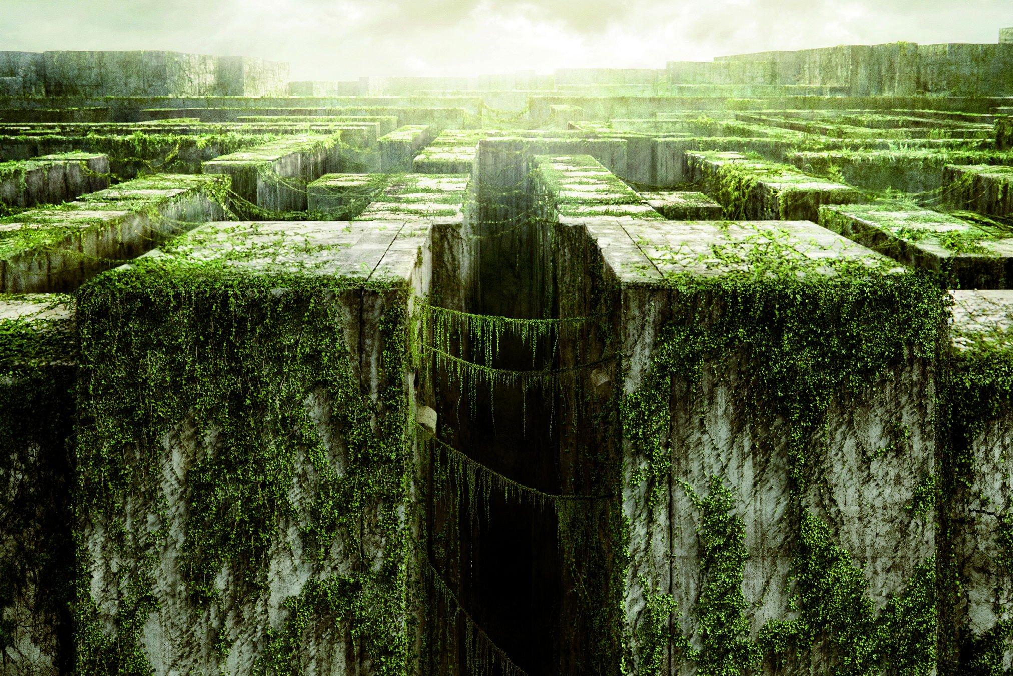 the maze runner movie wallpaper 54351