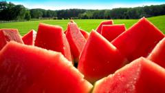 Watermelon Fruit Desktop Wallpaper 49286