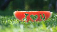 Watermelon Fruit I Love You Wallpaper 49288
