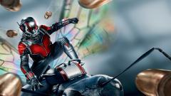 Ant Man Movie Wide Wallpaper 51412