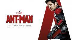 Paul Rudd Ant Man Wallpaper 51417