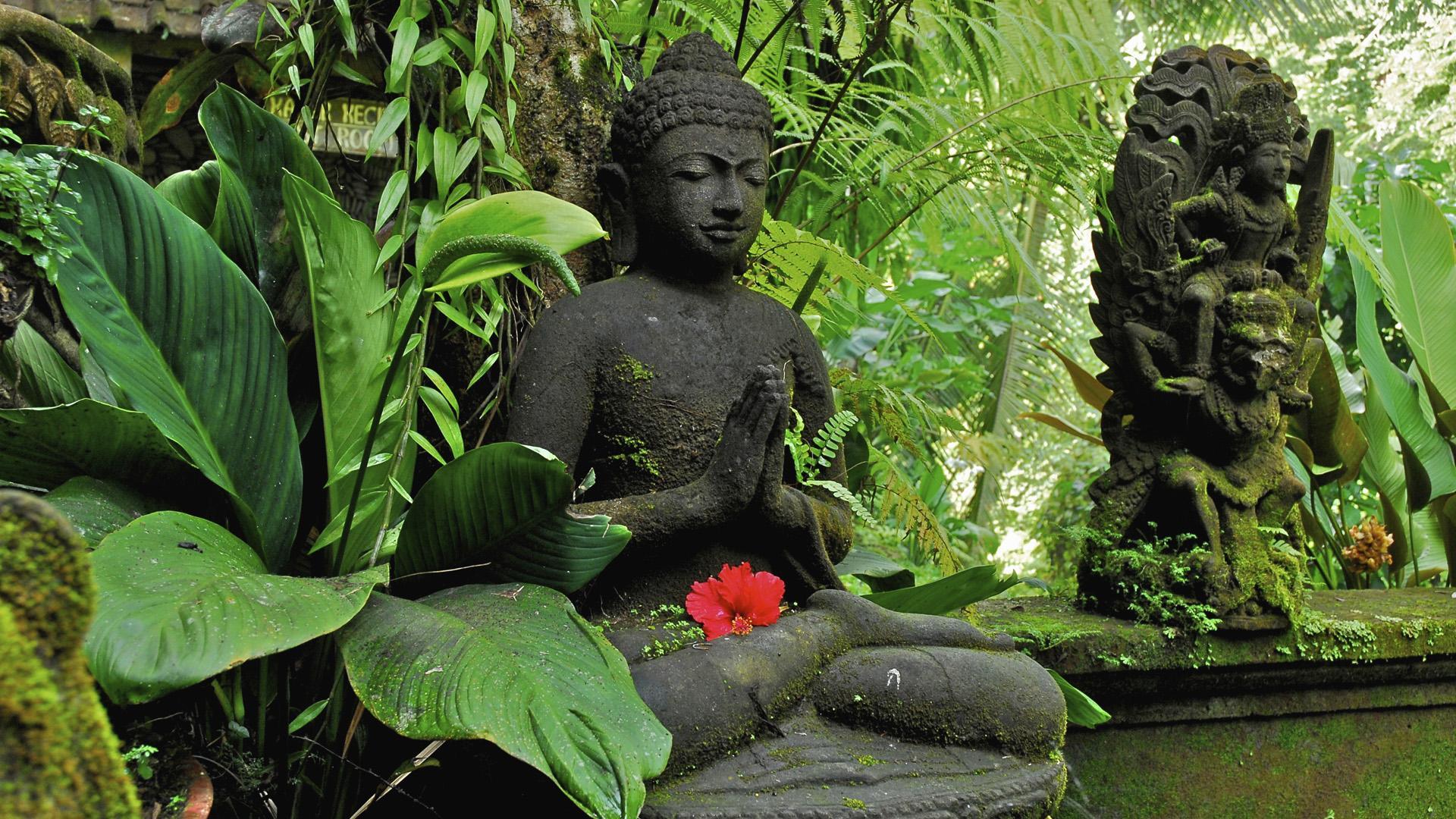 buddha desktop wallpaper 53140