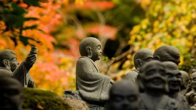 Buddha Desktop HD Wallpaper 53142