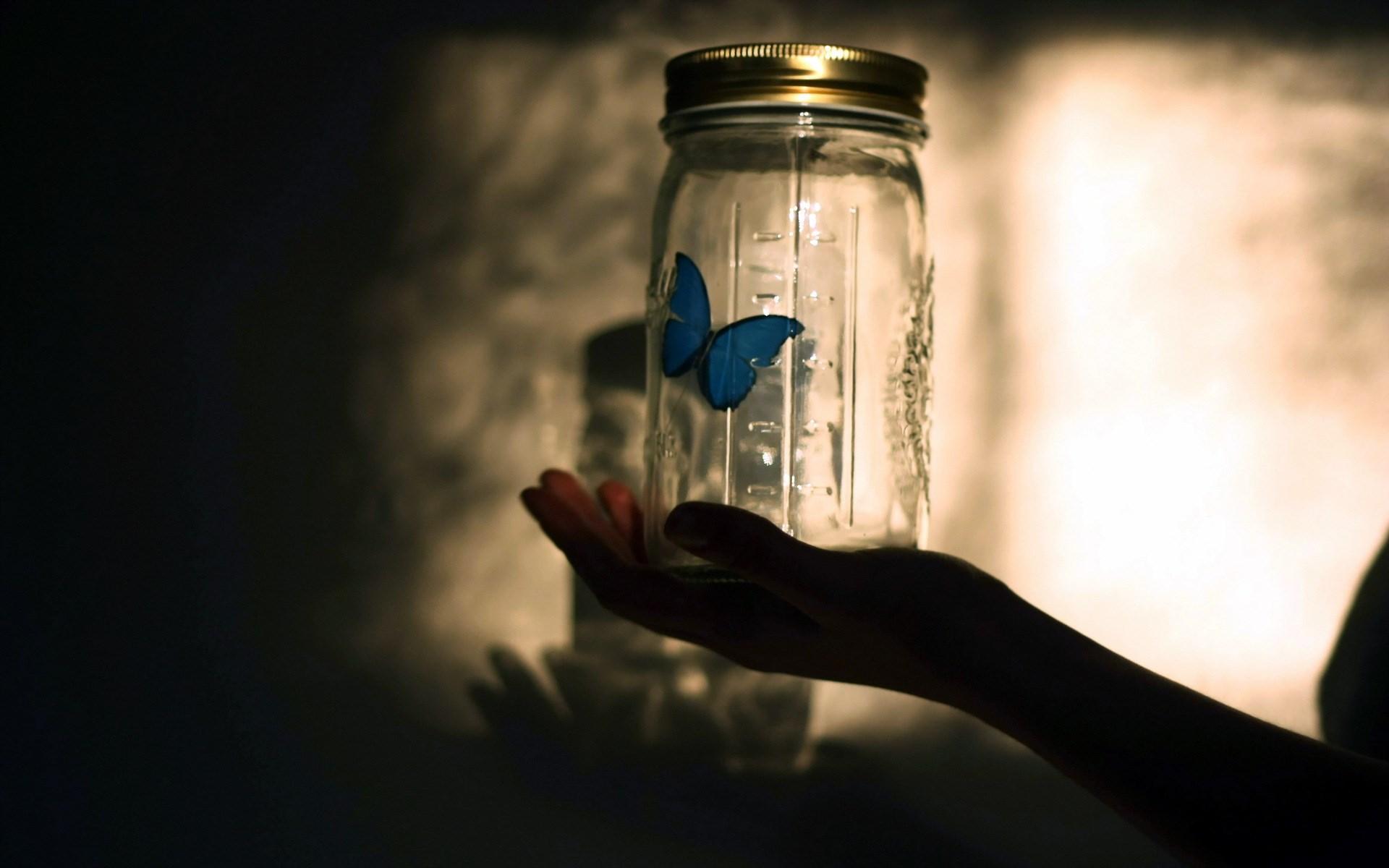 Love Jar Wallpaper : Blue Butterfly Jar Wallpaper 49805 1920x1200 px ...