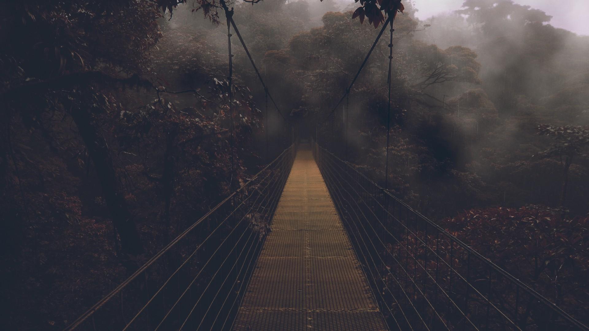 gloomy forest bridge wallpaper 49801