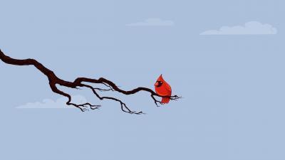 Cardinal Bird Art Wallpaper Background 52165
