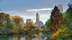 Central Park Wallpaper Background 49789