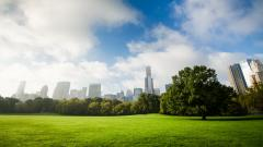 Central Park Widescreen Wallpaper 49787