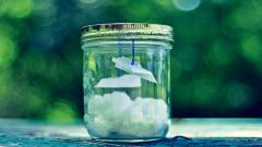 Glass Jar Wallpaper 49807