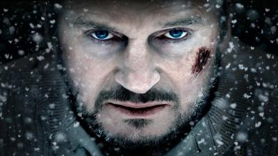 Liam Neeson Actor Face Wallpaper Background 56999