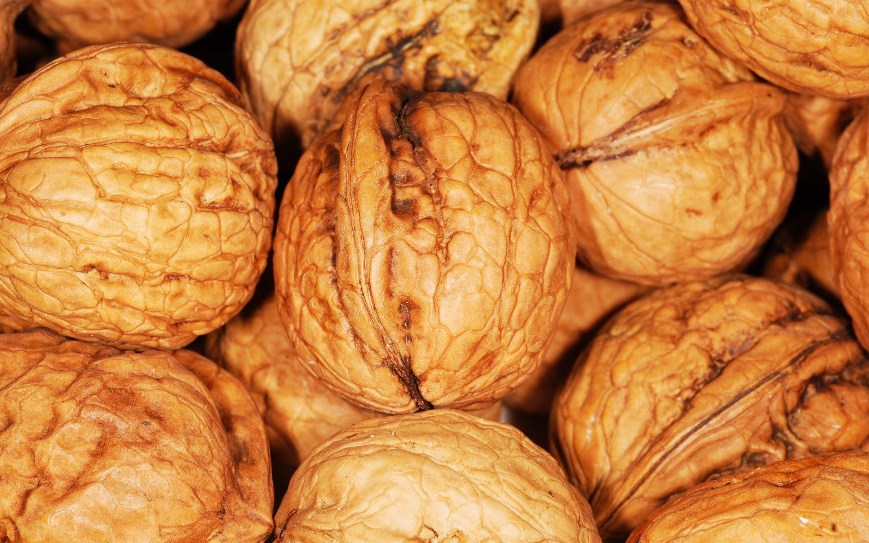 walnut widescreen wallpaper 52737