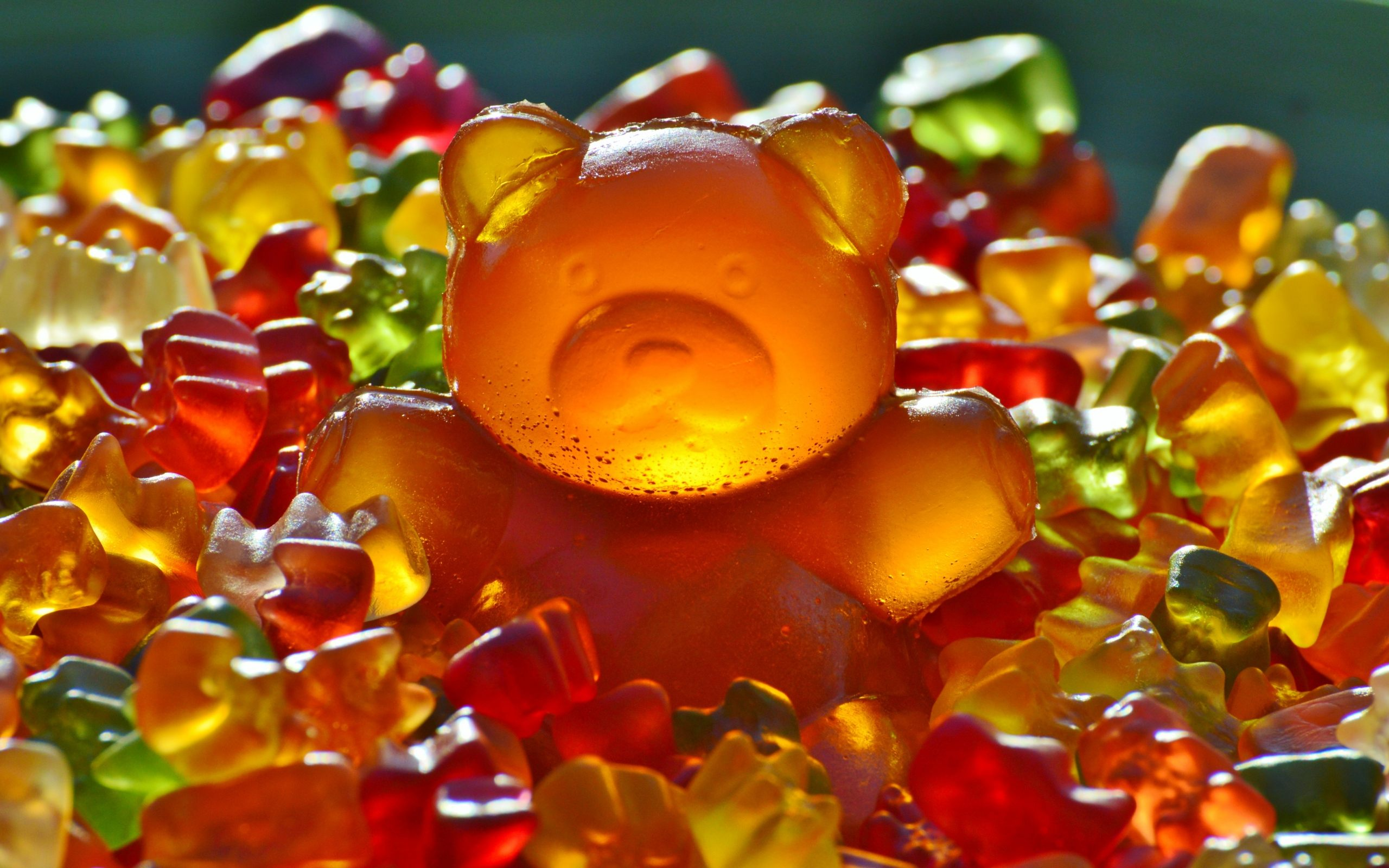 candy gummy bears wallpaper background 59015