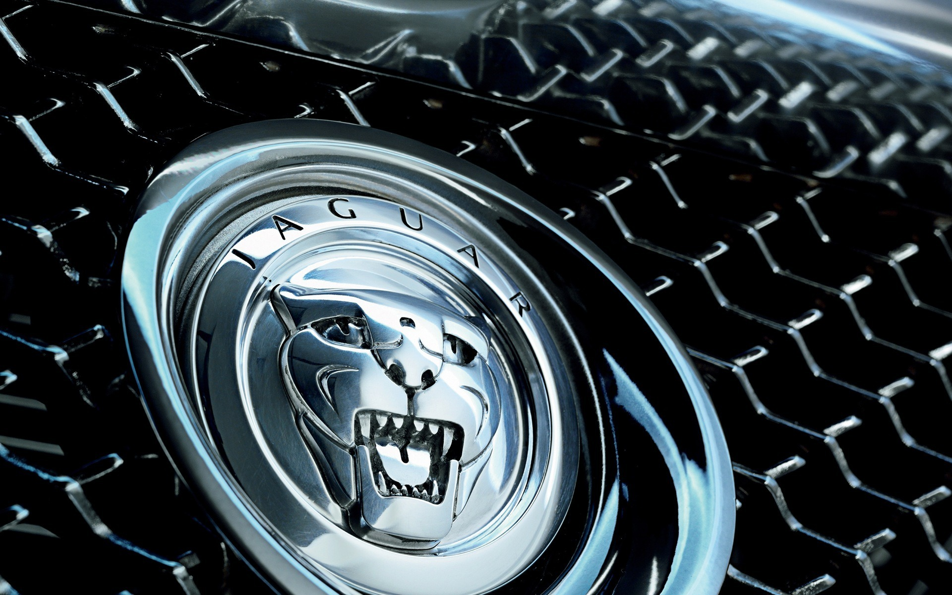 jaguar car logo wallpaper 58999