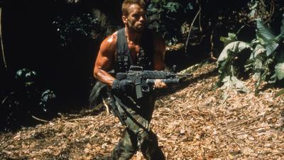 Arnold Schwarzenegger Actor Wallpaper 54959