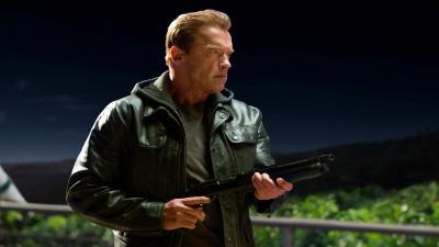 Arnold Schwarzenegger Actor Widescreen Wallpaper 54958