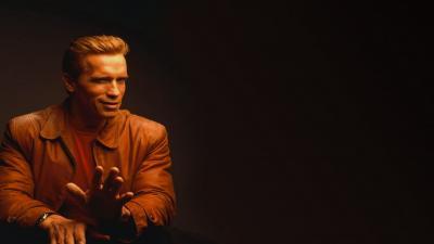 Arnold Schwarzenegger Computer Wallpaper 54956