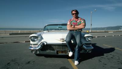 Arnold Schwarzenegger Widescreen Wallpaper Pictures 54960
