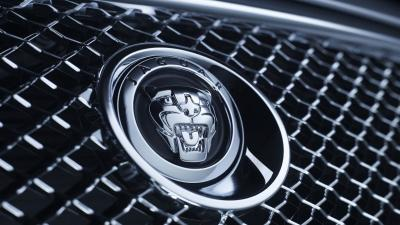 Jaguar Car Logo Desktop Wallpaper 59002