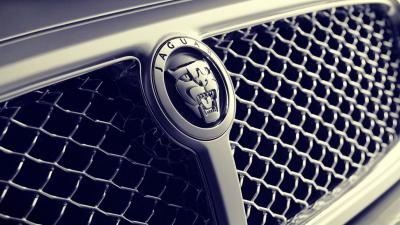 Jaguar Car Logo HD Wallpaper 58998