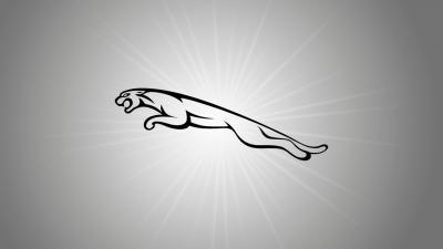 Jaguar Logo Desktop Wallpaper 59001