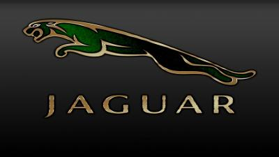 Jaguar Logo Wallpaper 59000