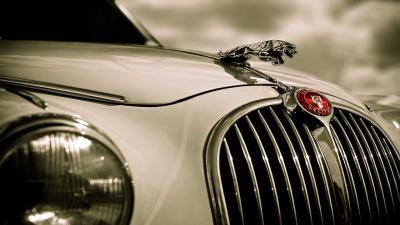 Jaguar Logo Wallpaper Pictures 59003